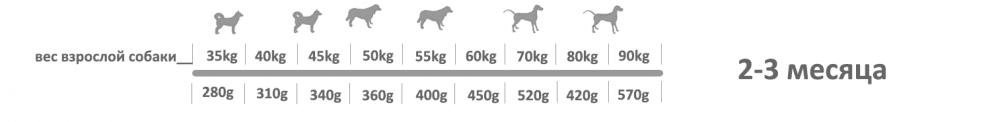 Adragna Breeder Maxi Puppy 2_3