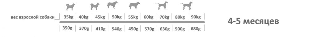 Adragna Breeder Maxi Puppy 4_5