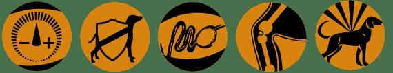 Adragna Breeder Professional Maxi